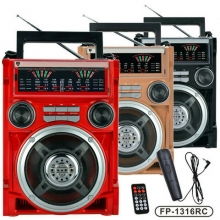 MP3 акумулаторна уредба с микрофон EPE FP-1316RC